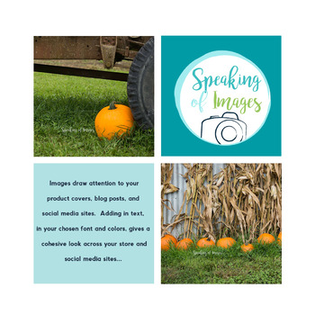 STOCK IMAGES: Pumpkins on the Farm