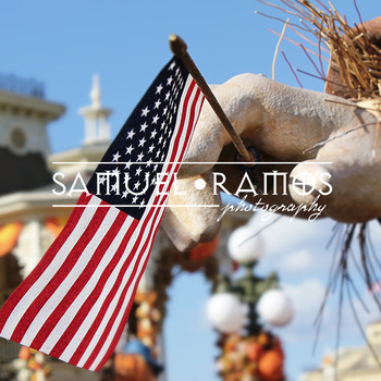 STOCK PHOTOS: American Flag [Personal & Commercial Use]