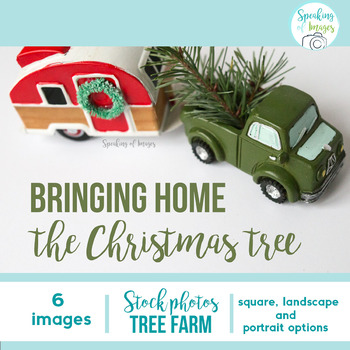STOCK PHOTOS: Christmas tree farm