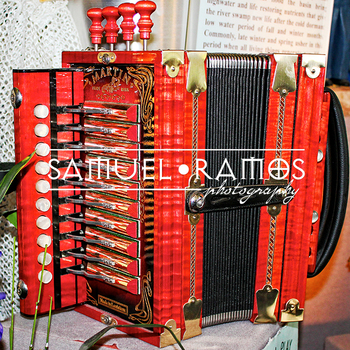 STOCK PHOTOS: Music: Button Accordion  [Personal & Commercial Use]