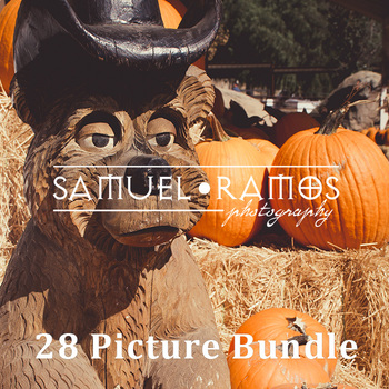 STOCK PHOTOS: October Autumn Pumpkin Patch - 28 Pics [Personal & Commercial Use]