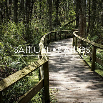 STOCK PHOTOS: Wooden Bridge [Personal & Commercial Use]