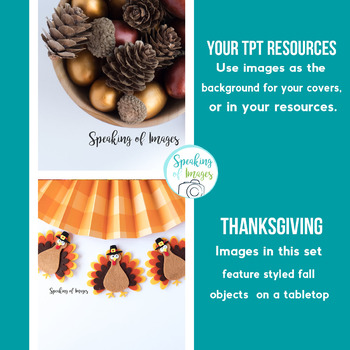 STYLED IMAGES: Thanksgiving