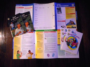 SUNSHINE BOOKS Lot of 29 w/ Lesson Plans by WRIGHT GROUP  Early Fluency LIKE NEW