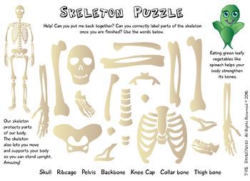 SUPERVEGES - SKELETON PUZZLE