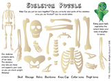 SUPERVEGES - SKELETON PUZZLE