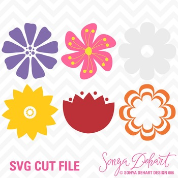 SVG Cuts Flowers Classroom Decor Silhouette Cricut Cut Files