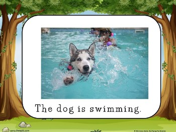 SWIMMING POWERPOINT LITTLE READER