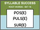 SYLLABLE SUCCESS 16 - PREFIXES, SUFFIXES, ROOT WORDS