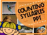 SYLLABLES PowerPoint Phonological Awareness Activity (NO PREP!)