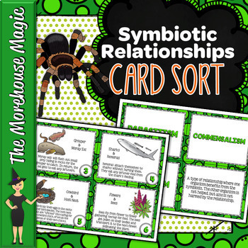 SYMBIOTIC RELATIONSHIPS CARD SORT, VOCABULARY ACTIVITY, WORD WALL