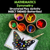 SYMMETRY - Structured Play Activity (Insect-Themed - Butterflies)