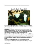 Saddle back clown fish - informational article lesson with review questions