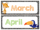 Safari   Jungle Themed Months of the Year (Number Cards included)
