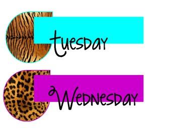 Safari-Animal Print Calendar Set ***