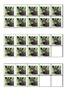 Safari Zebra Ten Frames Games