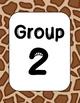 Safari Group Labels