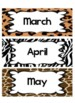 Jungle / Safari Theme 12 Month Signs
