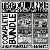 Safari Jungle Tropical Theme Classroom Decor Meet the Teac