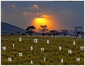Safari Math Hunt