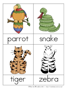 Safari Nomenclature 3 - Part Vocabulary Cards