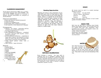 Safari Theme Policy and Procedure Brochure