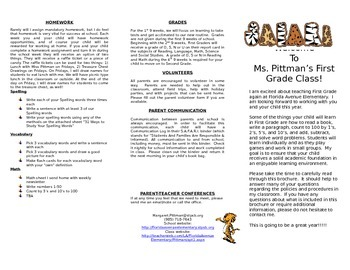 Safari Theme Policy and Procedure Brochure