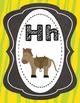 Safari Themed Alphabet
