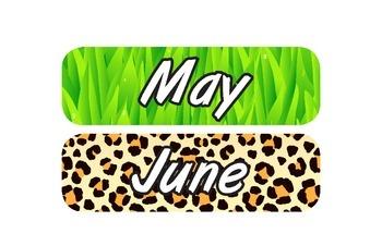 Safari Themed Calendar Materials