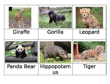 Safari Zoo Babies Matchup Cards