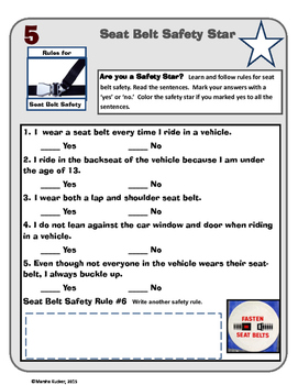 Seat Belt Safety Checklist