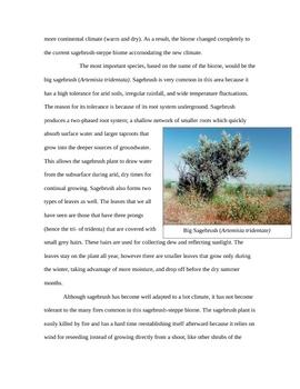Sagebrush Steppe Background Information