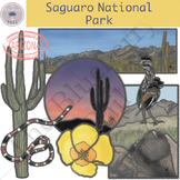 Saguaro National Park Clipart Set