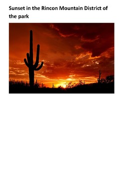 Saguaro National Park Handout