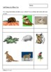 Sail Away - The Ballad of Skip and Nell by Mem Fox - Worksheets