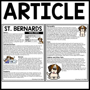 Saint Bernards Informational Text Reading Comprehension Call of the Wild