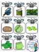 Saint Patrick's Day Themed Game in French - La tapette à mouches