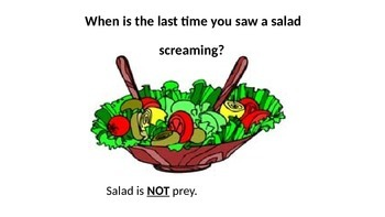 Salad is Not Prey: Predator-Prey *Funny*