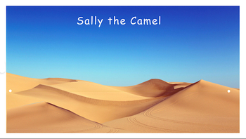 Sally the Camel Vest Display - PCS