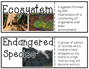Salmon & Ecosystems Science Vocab Cards
