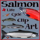 Salmon Life Cycle Clip Art