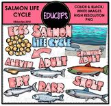 Salmon Life Cycle Clip Art Set {Educlips Clipart}