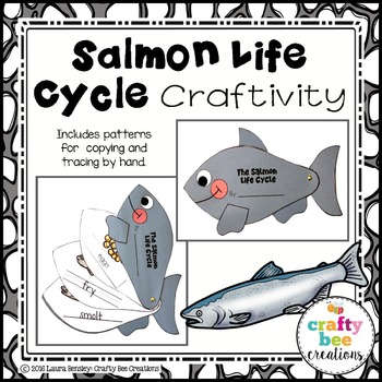 Salmon Life Cycle Craft by Crafty