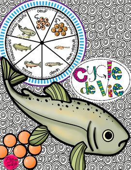 Salmon Life Cycle Craftivity ~ French ~ Le saumon