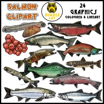 Salmon Clipart