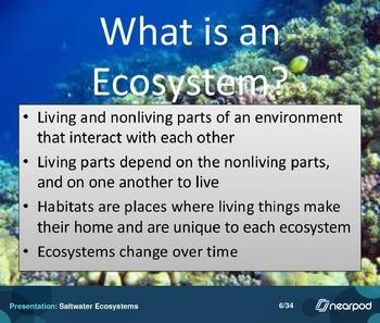 Saltwater Ecosystems