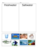 Saltwater VS. Freshwater