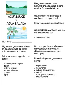 Saltwater and Freshwater Organisms {Spanish}