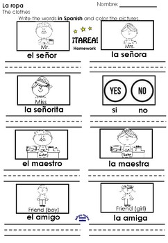 Saludos 2nd grade