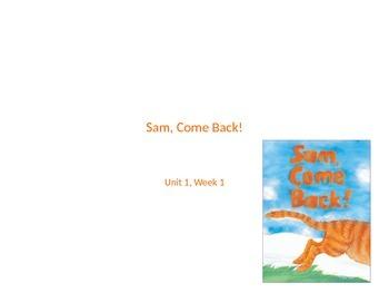 Sam Come Back!